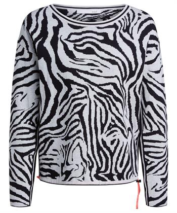 Oui trui zebra
